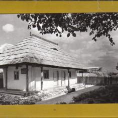 TARGU JIU RPR CASA ECATERINA MEMORIALA TEODOROIU - Carte Postala Oltenia dupa 1918, Necirculata, Fotografie