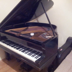 Vand pian August Förster