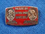 "Insigna Matei Basarab - Constantin Brancoveanu - Muzeul "" Istoria epocii Brebu """