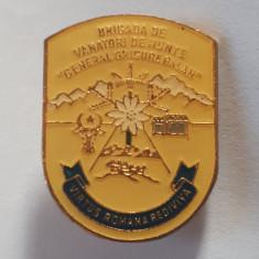 Insigna militara Brigada de Vanatori de munte - superba