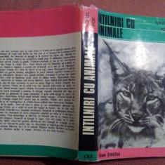 Intalniri Cu Animale - Ionel Pop, Alta editura