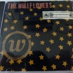 The Wallflowers - cd - Muzica Pop MCA rec