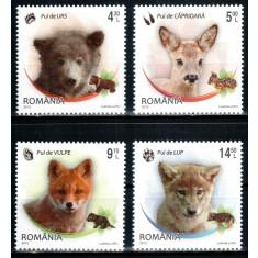 Romania 2012, LP 1960, Pui de animale salbatice, seria, MNH! LP 39,50 lei