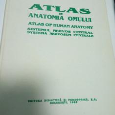 ATLAS DE ANATOMIA OMULUI - SISTEMUL NERVOS CENTRAL - Viorel RANGA