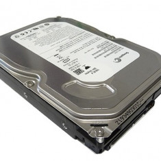 Hard disk Seagate 3.5 250GB