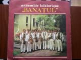 Banatul ansamblul folcloric ensemble folklorique disc vinyl lp muzica populara