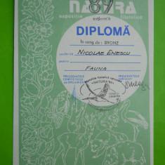 HOPCT DIPLOMA NR 42 -DIPLOMA DE ONOARE EXPO FILATELICA TIMISOARA NATURA 1989