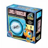 Jocuri Edu Science D-Toys Lumea Furnicilor, D-Toys
