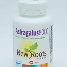 ASTRAGALUS 8000 - 90 capsule