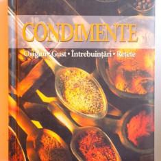 CONDIMENTE - ORIGINI, GUST, INTREBUINTARI, RETETE de ANNE IBURG, 2006 - Carte Retete traditionale romanesti