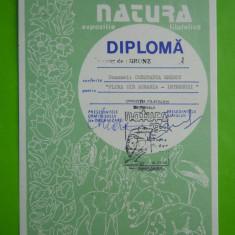 HOPCT DIPLOMA NR 41 -DIPLOMA DE ONOARE EXPO FILATELICA TIMISOARA NATURA 1994