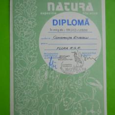 HOPCT DIPLOMA NR 43 -DIPLOMA DE ONOARE EXPO FILATELICA TIMISOARA NATURA 1988