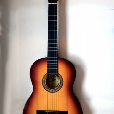 Chitara clasica Fender Hora Student N 4/4 + Husa