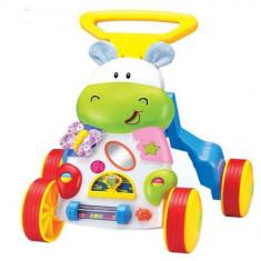 Antepremergator Hippo