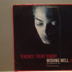 TERENCE TRENT D'ARBY - WISHING WELL(1987/CBS/HOLLAND) - VINIL Maxi-Single