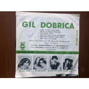 Gil Dobrica unde a fost visul hai acasa idila sub clar de luna disc single vinyl
