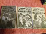 Al. Dumas - Vicontele de Bragelona - vol 4,6 ,10