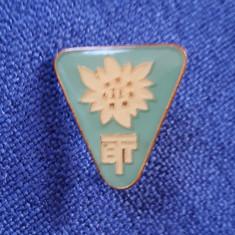 Insigna BTT - Floare de colt - Turism