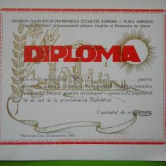 HOPCT DIPLOMA NR 54 -DIPLOMA DE ONOARE EXPO FILATELICA 1981 HARGHITA-MIN INTERNE