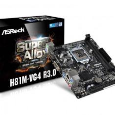 Placa de baza ASROCK Socket 1150, H81M-VG4 R3.0, Intel H81, 2*DDR3 1600/1333/1066, VGA, 1*PCIe 2.0 x16, 1*PCIe 2.0 x1, 2*SATA3 6.0 Gb/s, bulk, Pentru INTEL, LGA 1150, MicroATX
