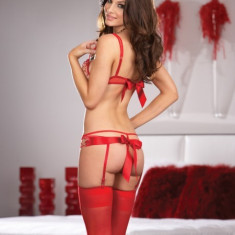 BUSTIER G-STRING - STOCKINGS