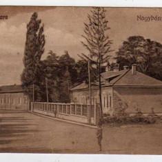 BAIA MARE STRADA CU CARUTA - Carte Postala Maramures dupa 1918, Necirculata, Printata