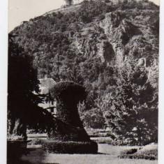 DEVA VEDERE DIN PARC SPRE CETATE RPR 1962 - Carte Postala Transilvania dupa 1918, Circulata, Fotografie