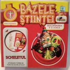 Joc Bazele stiintei, Scheletul, de la Noriel, pentru copii 5+ ani - Jocuri Stiinte