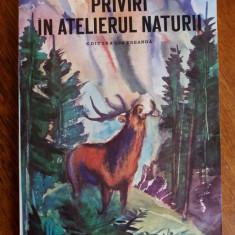 Priviri in atelierul naturii - Ionel Pop / C59P