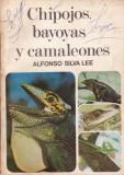 Chipojos, bayoyas y cameleones