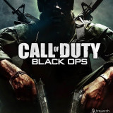 Call of Duty Black Ops - Nintendo Wii [Second hand]