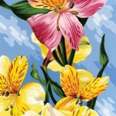 Pictura cu numere, flori