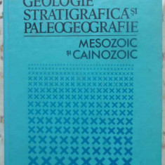 Geologie Stratigrafica Si Paleogeografie. Mesozoic Si Cainozo - Nita Tataram, 411093 - Carte Geografie