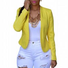 CL569-2 Pantaloni Bermuda Shorts, cu model taiat - Pantaloni dama, Marime: M