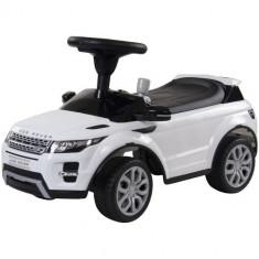 Masinuta Range Rover Alba