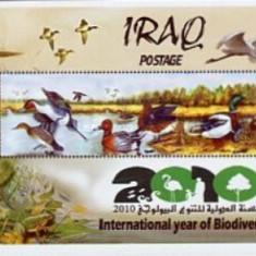 Irak 2010 - Fauna, colita ndt neuzata - Timbre straine
