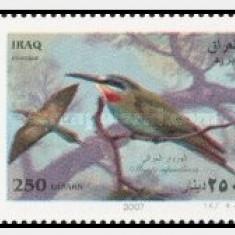 Irak 2007 - Pasari, serie neuzata - Timbre straine