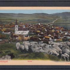 SIBIU BOITZA VEDERE GENERALA - Carte Postala Transilvania dupa 1918, Necirculata, Printata