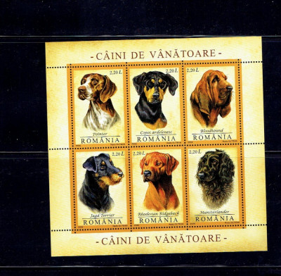 Romania 2005 - bl. 361 - caini de vanatoare foto