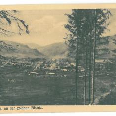 3419 - KIRLIBABA, Bukowina, Suceava - old postcard - unused - Carte Postala Moldova 1904-1918, Necirculata, Printata