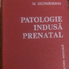 PATOLOGIE  INDUSA  PRENATAL