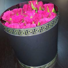 Cutie de lux pentru flori