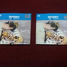 DVD  DISCOVERY VIATA PRINTRE TIGRI 2 DVD, Romana