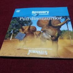 DVD DISCOVERY PUII DINOZAURILOR - Film documentare, Romana