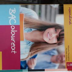 LIMBA SI LITERATURA ROMANA BACALAUREAT 110 TESTE - IONESCU, GEORGESCU - Teste Bacalaureat