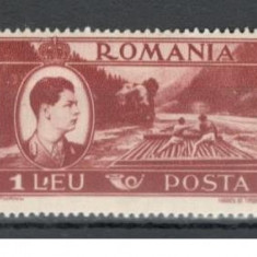 Romania.1947 Mihai I-Vederi 1 Leu EROARE punct YR.72 - Timbre Romania, Nestampilat
