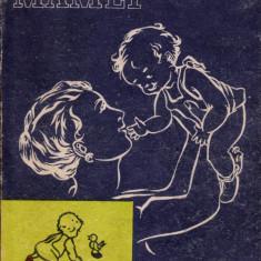 Școala mamei - Carte Ghidul mamei