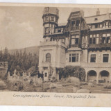 4294 - SINAIA, Romania, Peles Tower - old postcard - unused, Necirculata, Printata