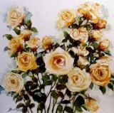 Pictura, tablou cu trandafiri, pictura originala ELENA BISSINGER 2015 60x60 #593, Flori, Ulei, Realism