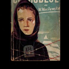 Curcubeul - Wanda Wasilewska / Vanda Vasilevscaia, cartea rusa - Carte veche